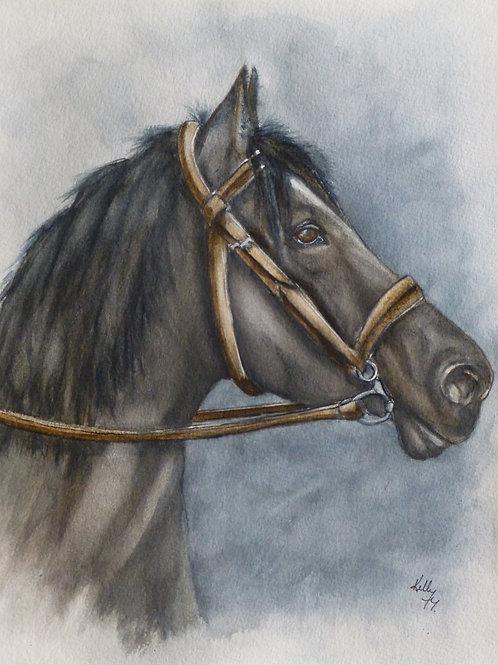 Horses Side