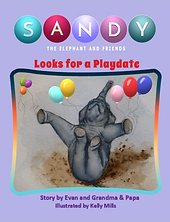 New size for Sandy book.png