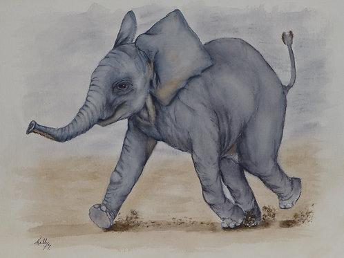 Baby Elephant (Sandy)