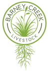 Barney-Creek-Logo-Color.png