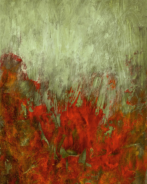 Red poppies series