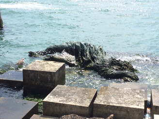 Venice Italy, Statue in the water