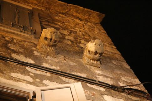 Stari Grad Protectors