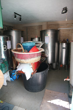 Local Wine Making