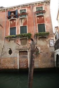 Venice Birdy