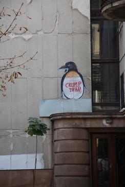 Penguin In Lviv