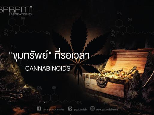 Cannabinoids - ขุมทรัพย์ที่รอเวลา
