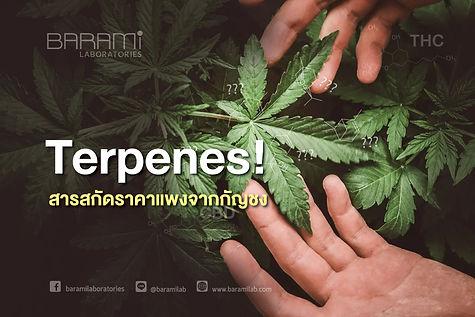 Terpenes!-01.jpg
