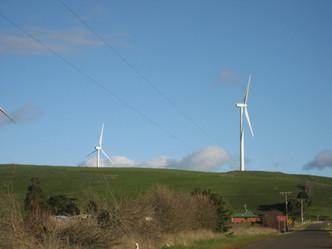 windfarm_0963.JPG