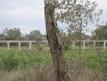 Avoca railway bridge_0454.jpg
