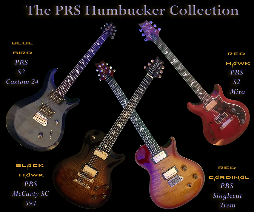 HumbuckerCollection.png