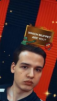 Which Muppet ? Instagram Filter by Jason Kovac