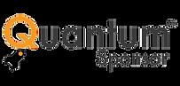 Quantum Sponsor Logo