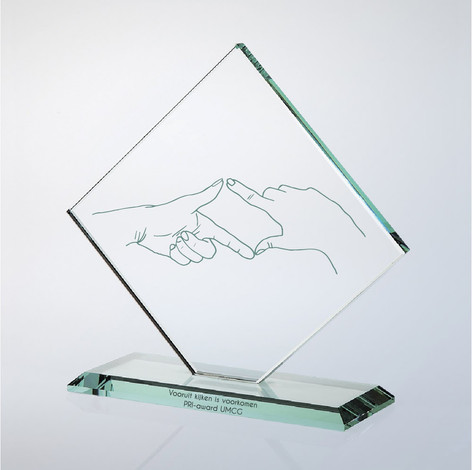 Award for Prospective Risk Analysis - Healthcare, University Medical Center