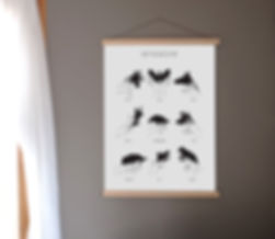 frame skyggedyr website.jpg