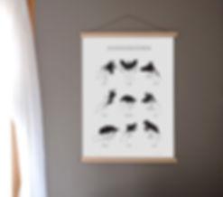 frame schaduwdieren.jpg