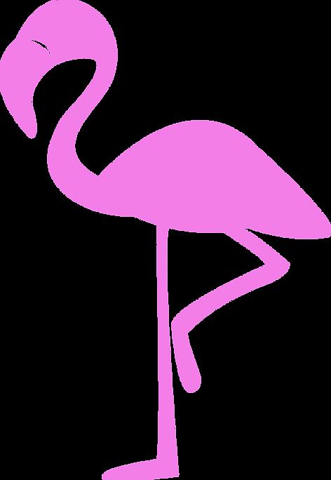 Birthday Lawn Cards Flamingo Logo