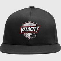 Velocity Skills Development