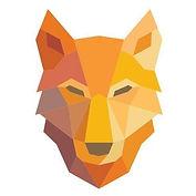 Foundry 52 Wolfnet Technologies Logo.jpeg