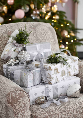 A  Sprinkling of Silver Christmas Ideas