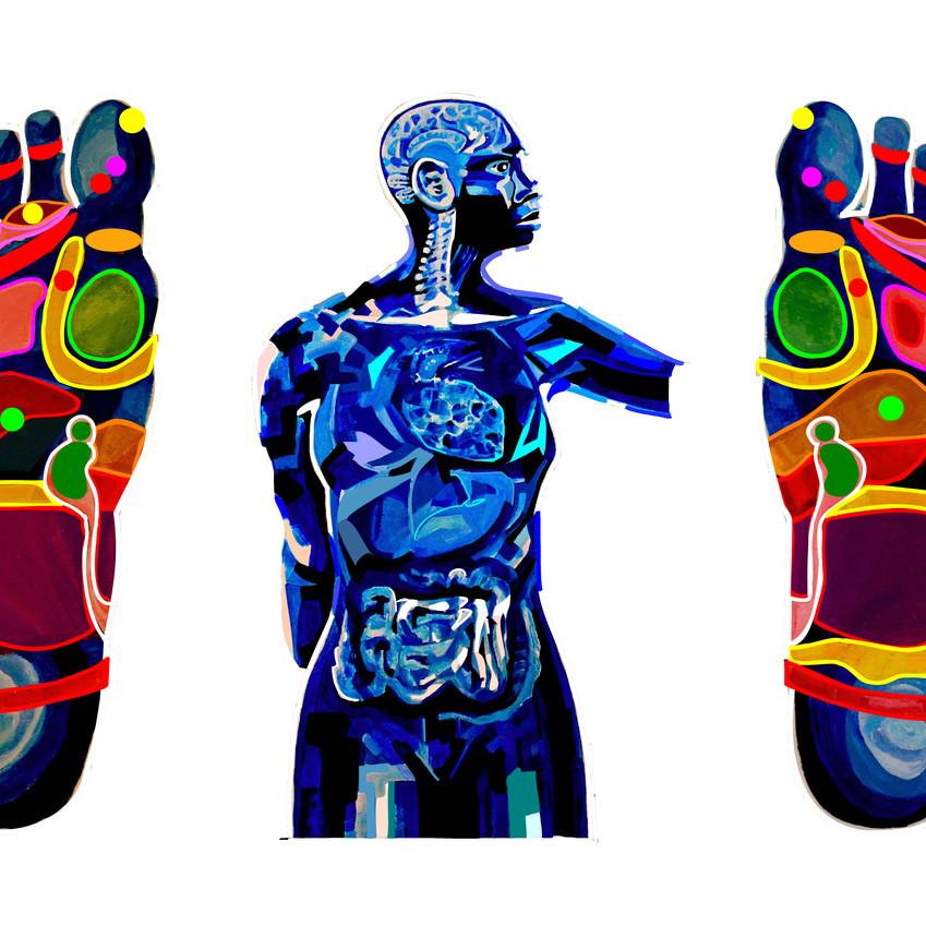 Reflexology Body & Feet
