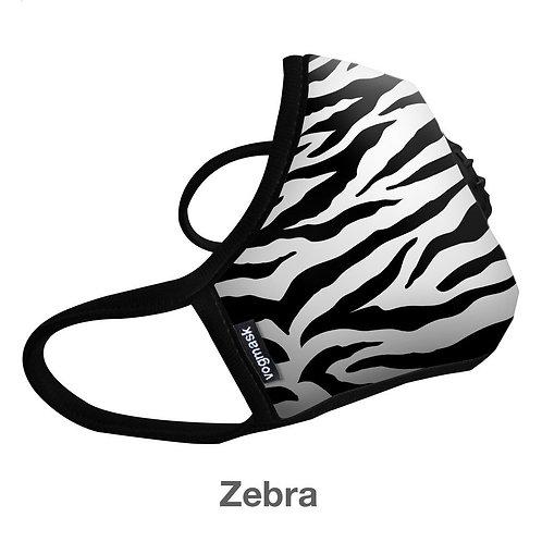 Zebra N99CV - Data 2019