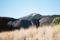 Bisbee Hiking