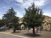 BISBEE: SOUTHEASTERN ARIZONA'S AVIAN HAVEN