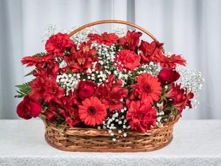 3 dicas para comprar flores em Ubatuba