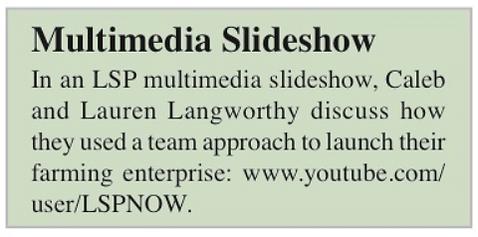 LSP - Multimedia.PNG
