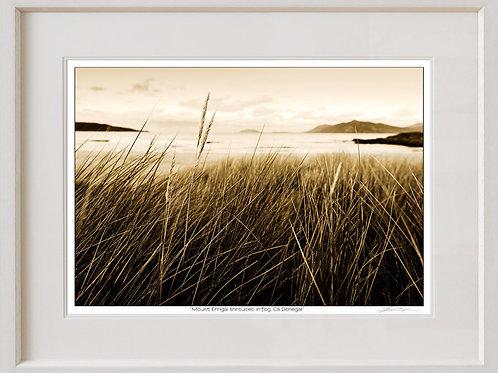 Shaun Egan 'Seagrass', Co. Donegal