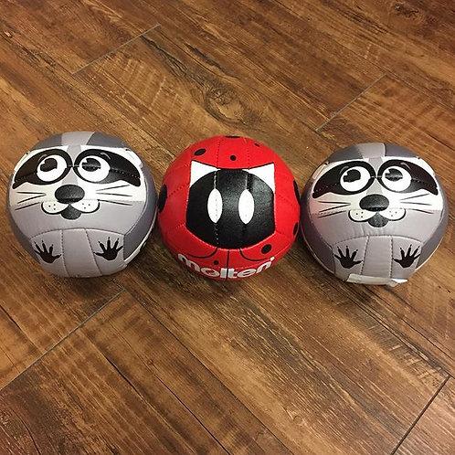 Beginner Balls