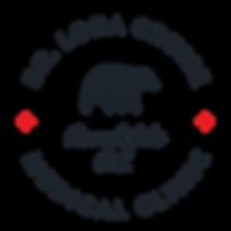 LoraCruise_Website_Logos-01.png