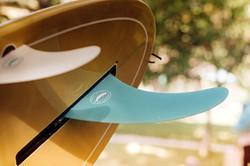 Surf Board Fin