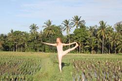 Rice field Yoga Ubud