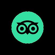 Tripadvisor_icon_logo.png