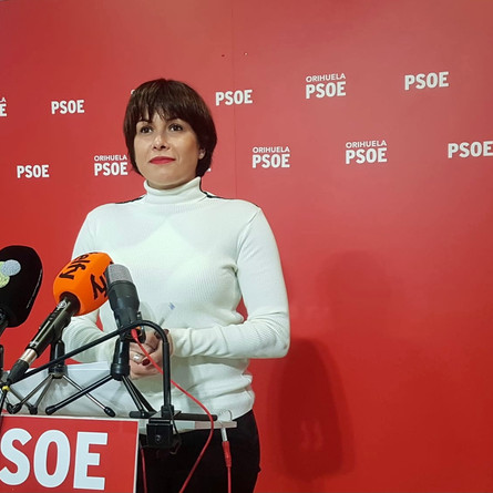 PSOE denuncia que el Ayuntamiento no ha tramitado 274 multas de tráfico de los meses Julio y Agosto