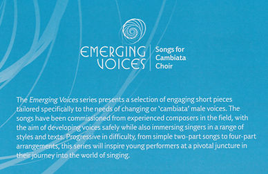 1705P Emerging Voices Info.jpeg