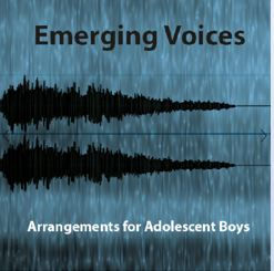Emerging voices.JPG