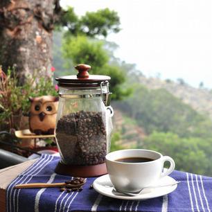 霧台摩凱咖啡