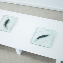 Works from the series White Material