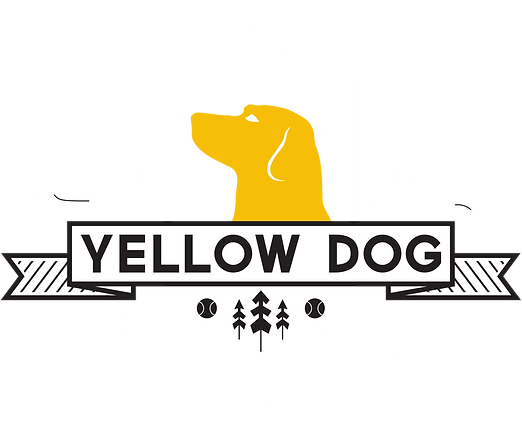 Yellow Dog Boarding Walking and Training
