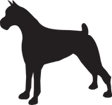 Yellow Dog Boarding Walking and Training