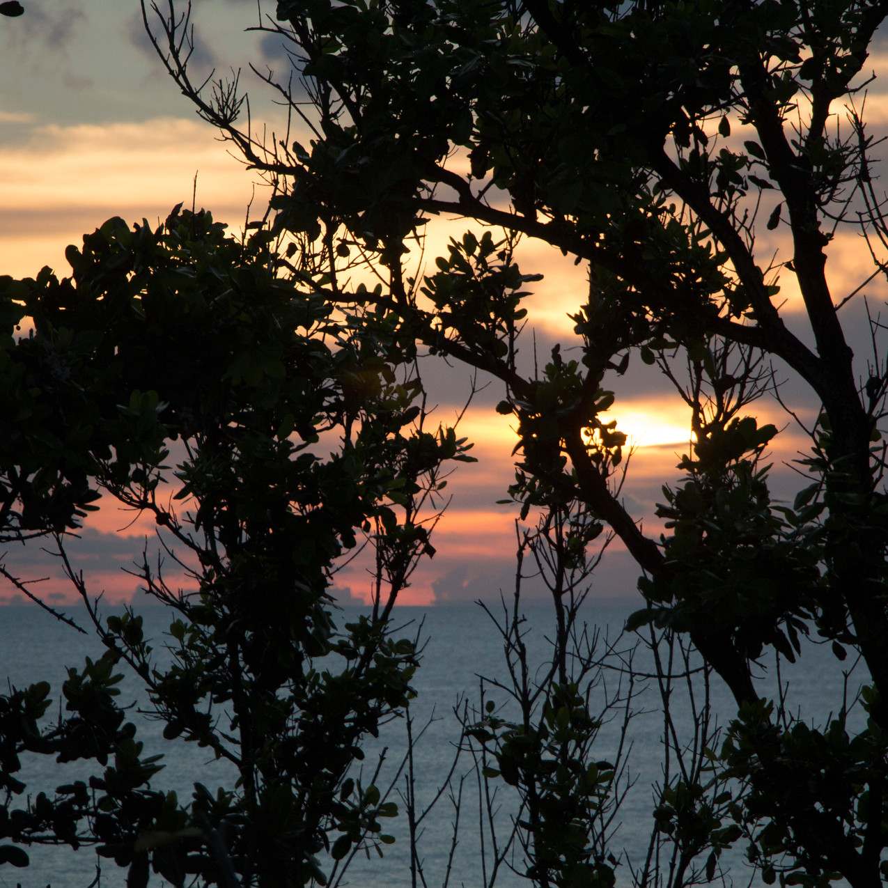 Sunset from Hotel Indigo
