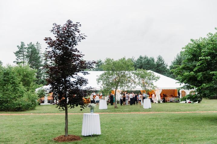 Best Collingwood BlueMountain Wedding Pl