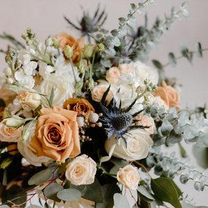 Collingwood Flowers