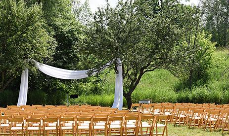 Georgian Hills Vineyards Wedding