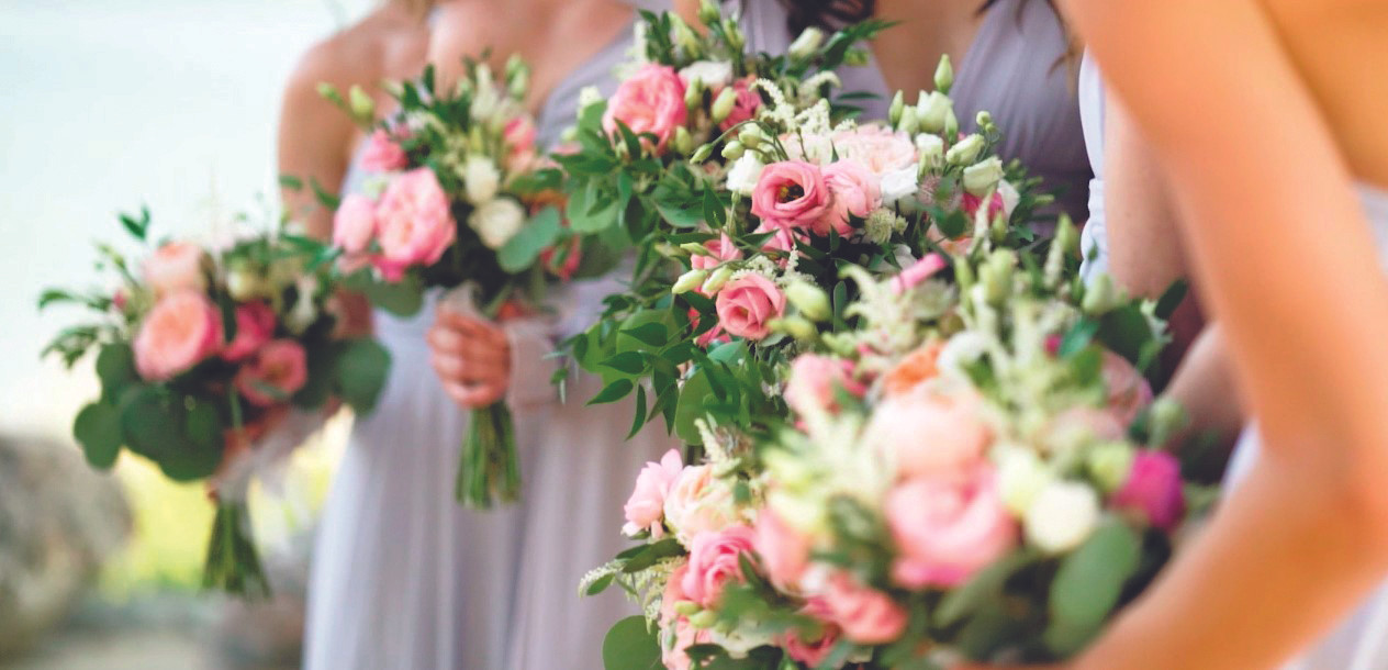 Collingwood BlueMountain Wedding