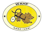 asbl wahf refuge animaux chiens chats rongeurs bruxelles