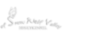 Logo_Aktuell_weiß.png